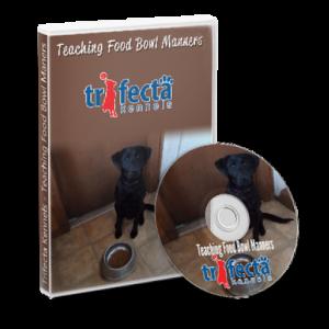 Teaching Food Bowl Manners