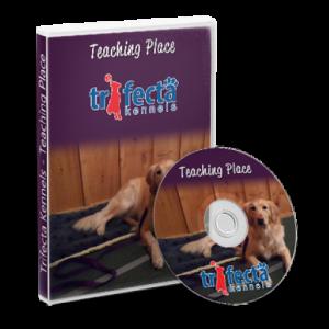Teaching Stand Video